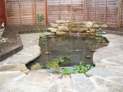 Home garden designs landscaping ideas backyard nikon for Concrete backyard pond