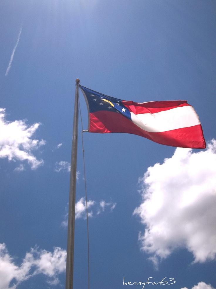 the georgia flag