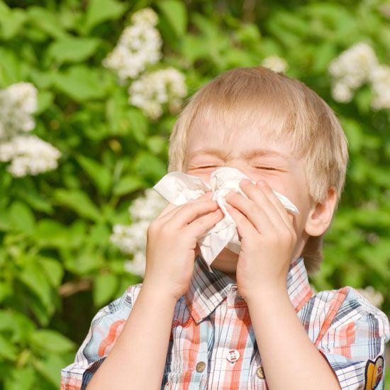 Rethinking food allergies photo