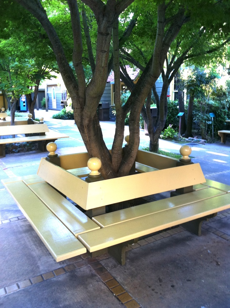 Bench around a tree trunk tree benches pinterest for Tree trunk garden bench