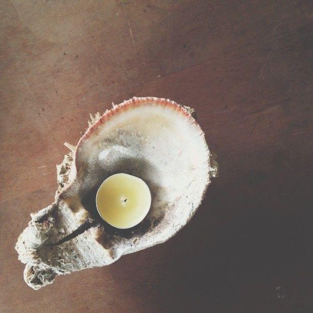 DIY || sea shell candle holder