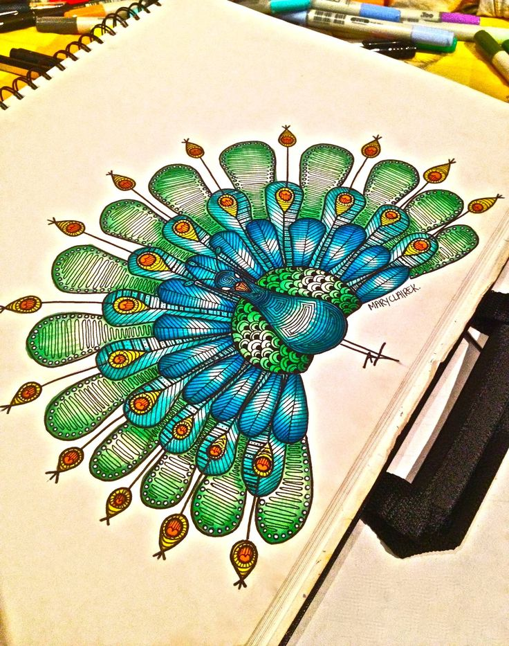 how to draw a cute peacock