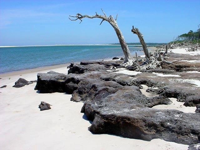 Camping At Little Talbot Island State Park