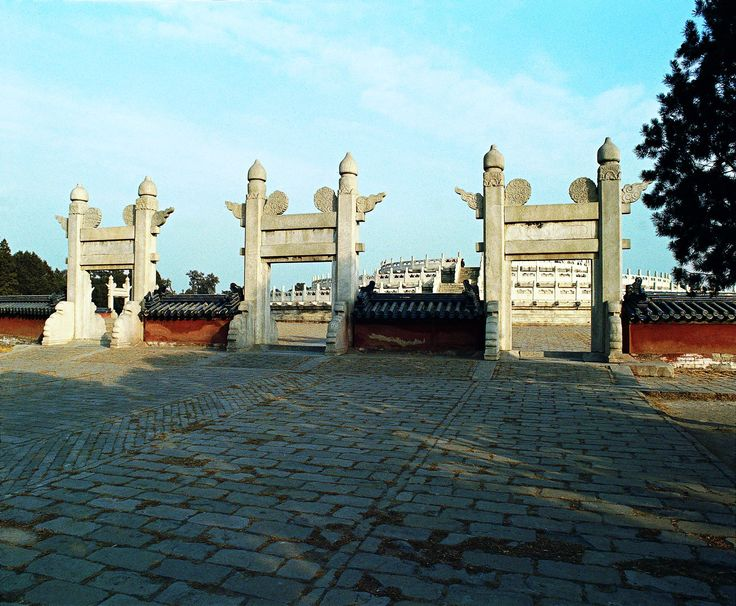 temple terrace asian