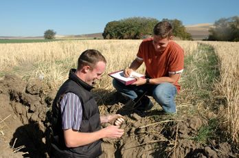 Agriculture best bachelor degrees