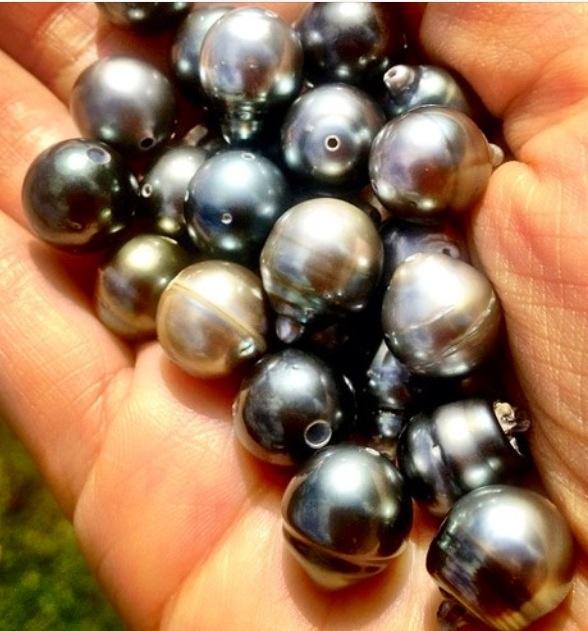 Tahitian Black Pearls | Photography
