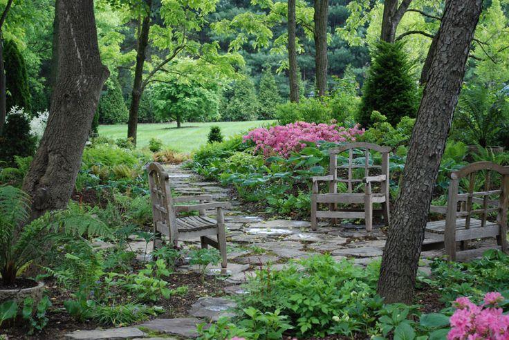 Woodland garden path gardening outdoors pinterest for Woodland landscape design
