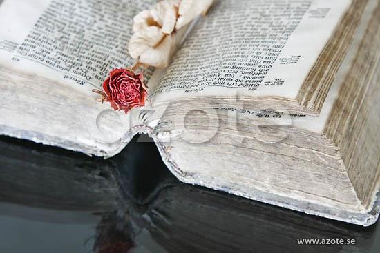 Antik bok