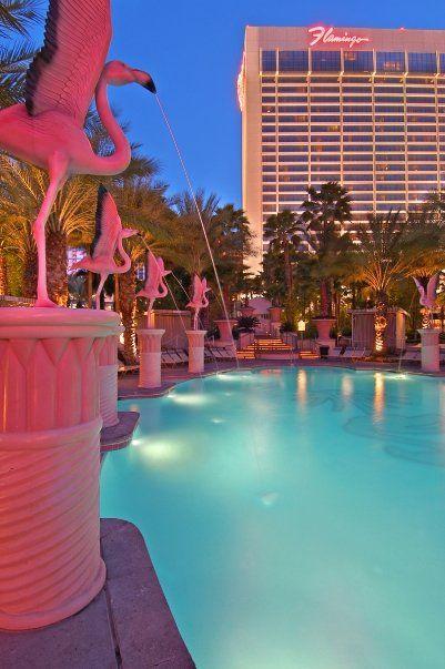 Flamingo Pool, Las Vegas. Flamingos Pinterest
