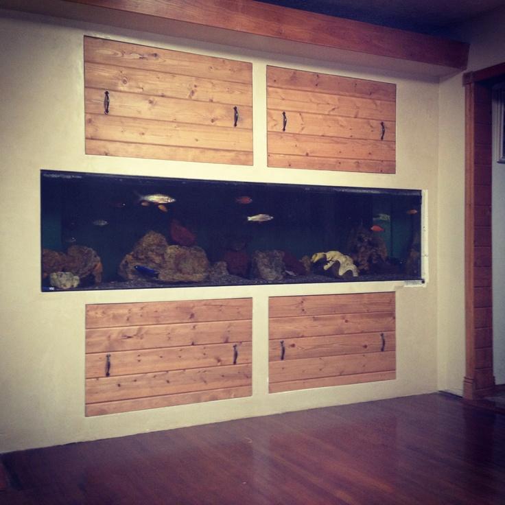 My built in wall fish tank home aquarium pinterest for Built in fish tank