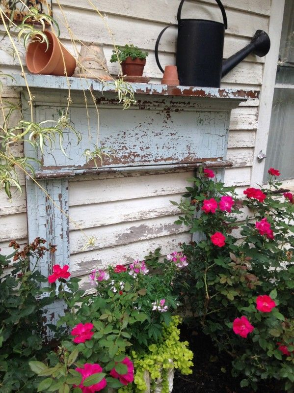 Pinterest Garden Shed Interior Decor Dog Breeds Picture