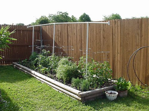 Small vegetable garden gardening pinterest for Small vegetable garden
