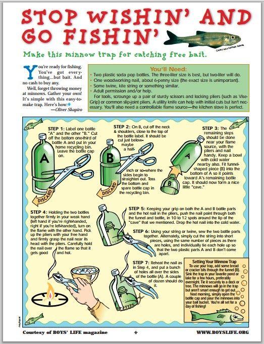 Diy minnow trap fishing pinterest for Diy fish trap