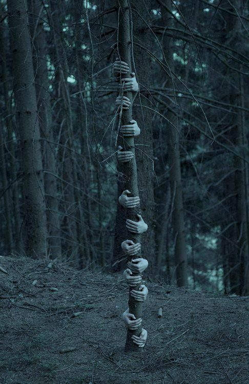 sorry, no directions or what was used, but super cool & creepy!
