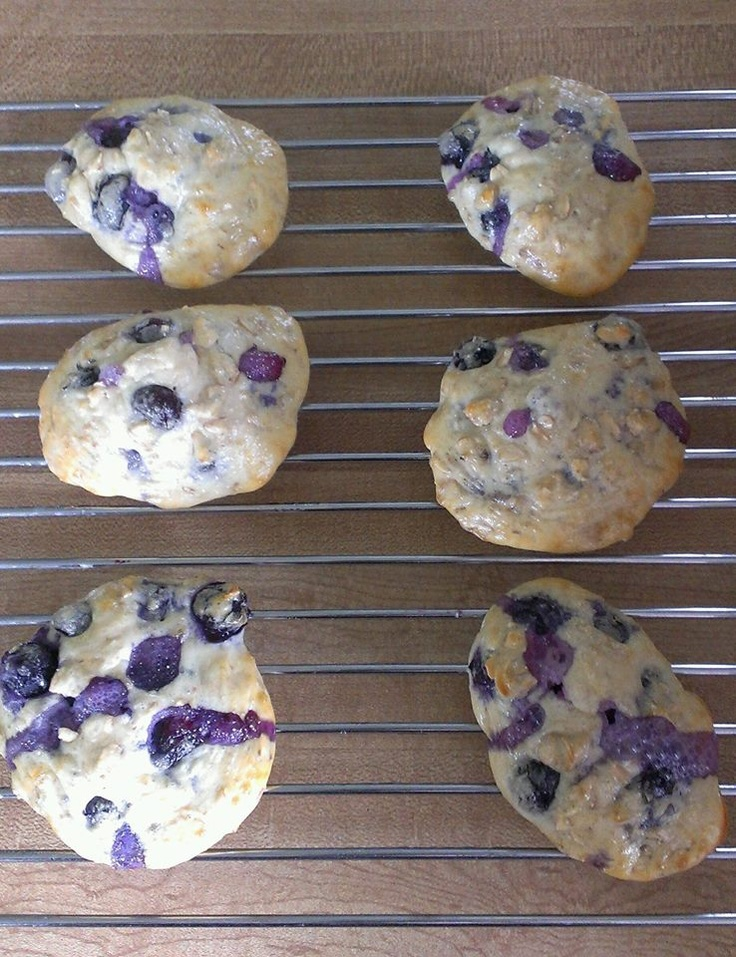 World. High Protein Blueberry Cookies Ingredients (Makes 10 cookies ...