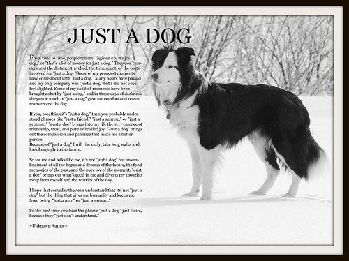 Just A Dog Baxter Black