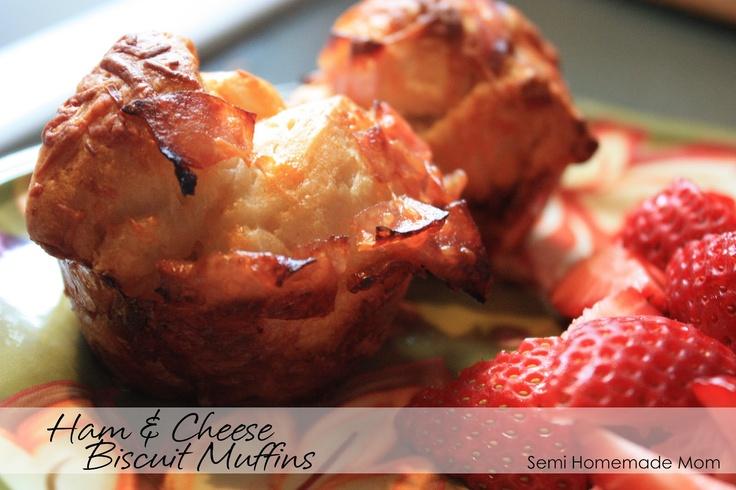 Ham & Cheese Biscuit Muffins   Breakfast Dishes   Pinterest