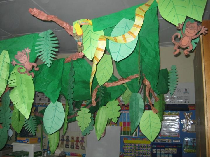 Classroom Decoration Jungle Theme : Rainforest classroom pinterest