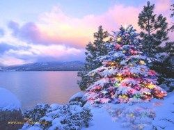 Christmas Desktop Themes | Winter.... too Cold | Pinterest