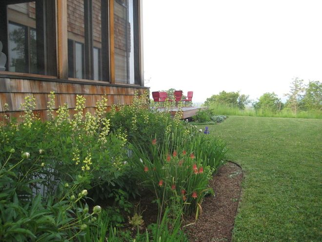 landscaping joy studio - photo #18