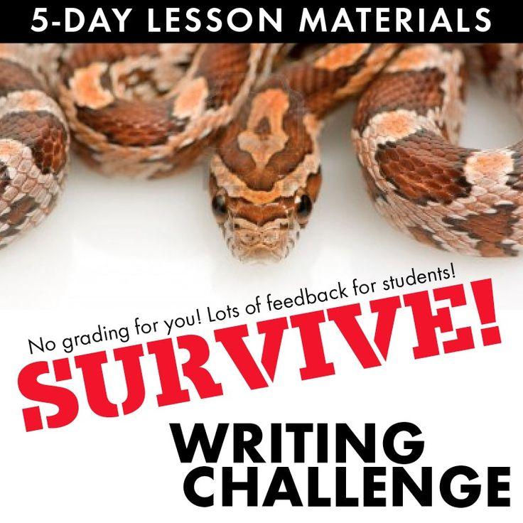 Practicum students essays for student teaching