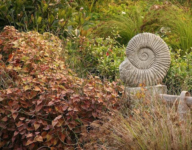 Nautilus shell sculpture crafts pinterest for Nautilus garden designs