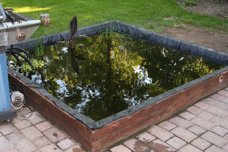 Backyard Koi Pond Diy : Backyard koi pond  DIY  Pinterest