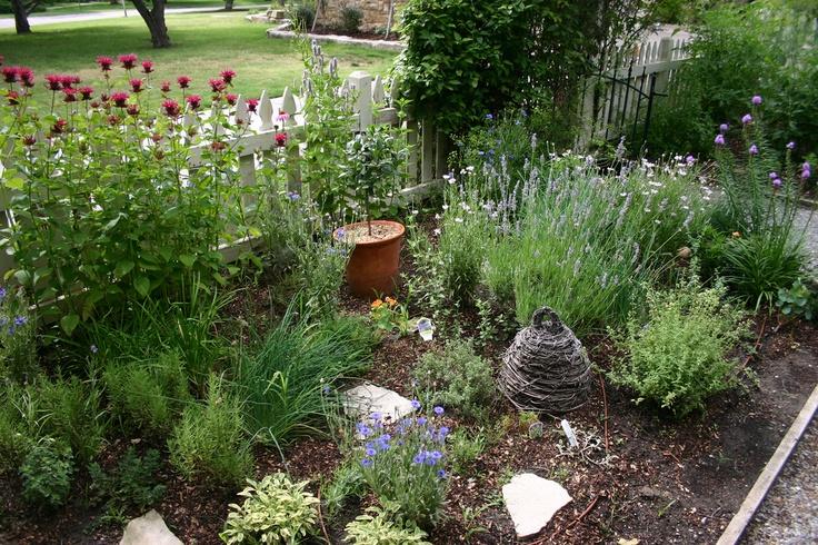 Landscaping With Herbs : Herb garden gardening