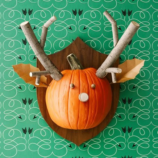 Heres a catch you can be proud of #PumpkinaDay