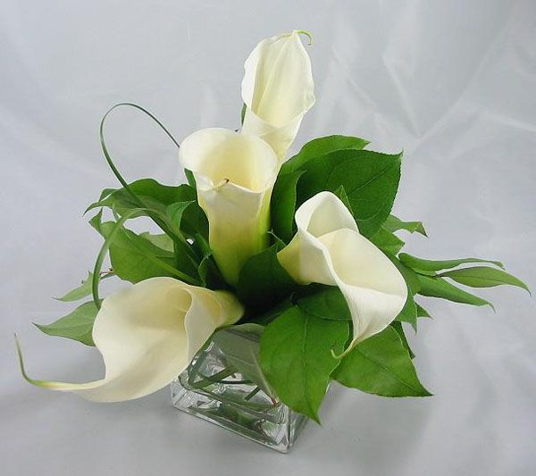 Small calla lily centerpiece baby s breath wedding