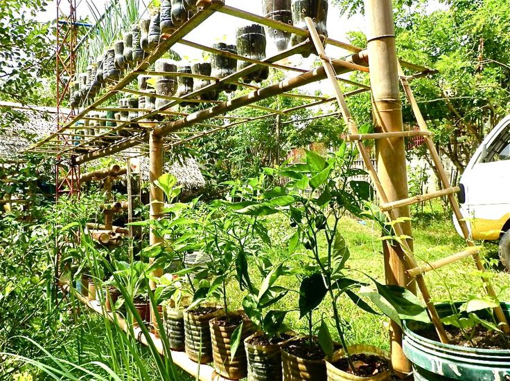 Tiered Vertical Garden Ideas Page 2 Outdoor Potager