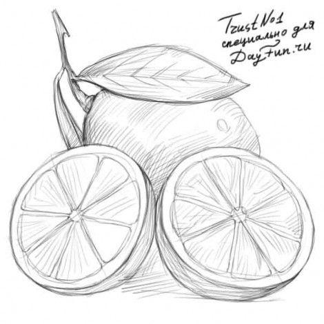 Как рисуют лимон поэтапно