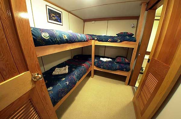 Cruise Ship Cabin Style Quad Bunks Interior Design
