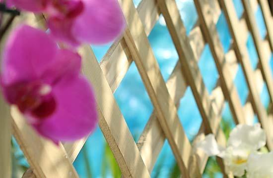 cerca de madeira para jardim leroy merlin:Complete seu jardim !