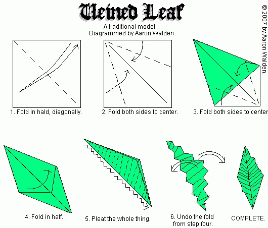 Leaf Origami Diagram Paper S Plasticity