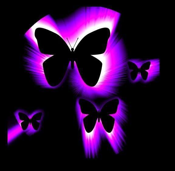 Neon butterflies | Butterflies | Pinterest