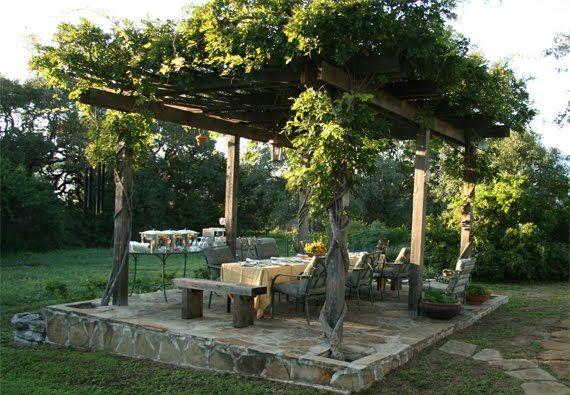 Pergola With Vines : pergola with grape vines  Christles Backyard  Pinterest