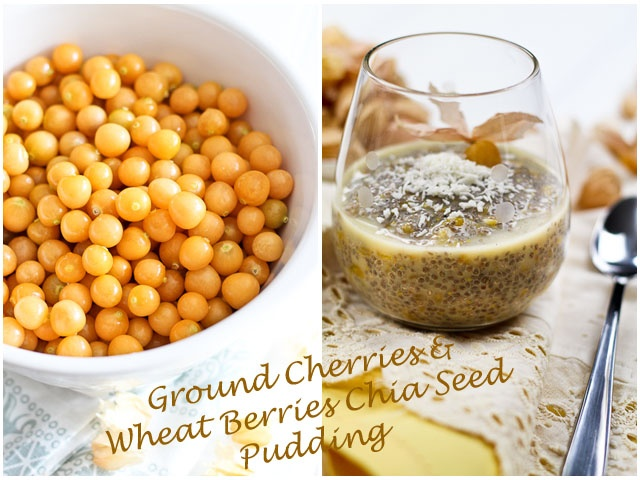 Ground Cherries & Wheat Berries Overnight Chia Seed Pudding | by Sonia ...