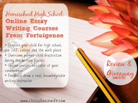 online no essay scholarships