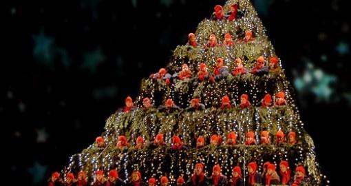 christmas trees singing tree - photo #21