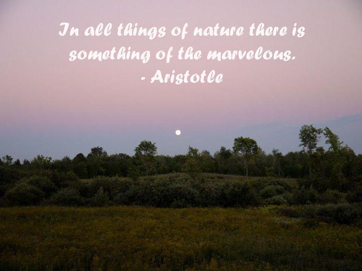 inspirational nature quote ontario nature pinterest