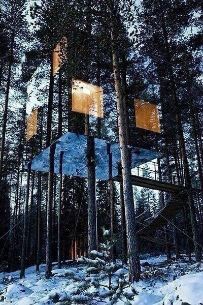 Tree house made of mirrors on the outside.