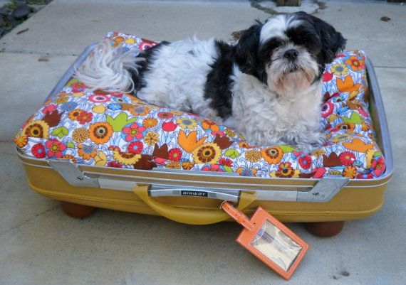 Suitcase Pet Bed - So cute!