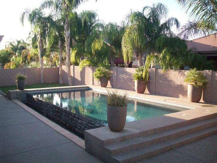 Grass And Palm Trees Around Pool Landscaping Pinterest