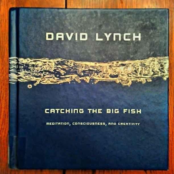 Catching The Big Fish David Lynch Pdf Download