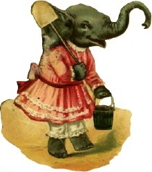 Another Elephant Ephemera