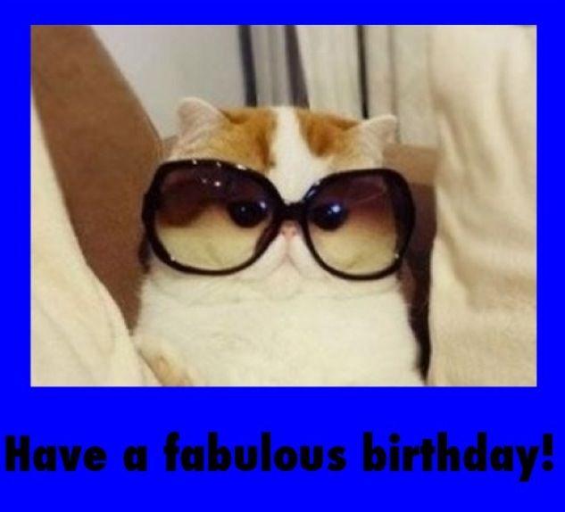 happy birthday humor images