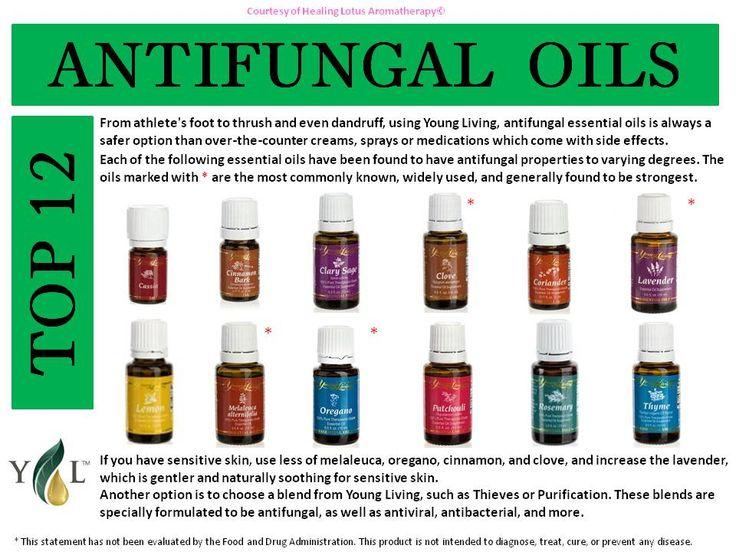 Anti fungal Essential Oils   essential oils   Pinterest