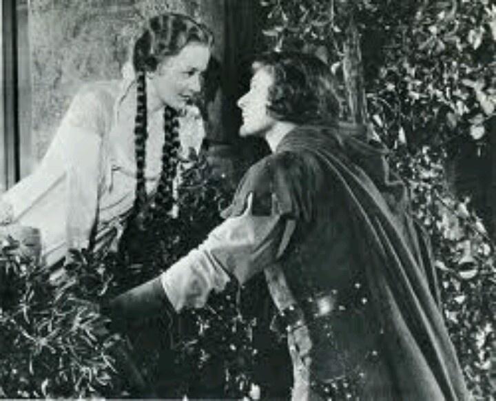 Pin by Harborough Pl on Errol Flynn and Olivia de ...