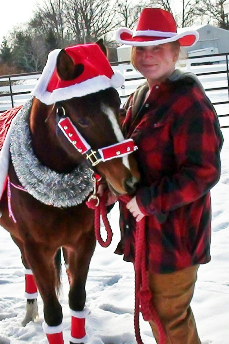 Christmas 2013 with the pony nothing like dressing a horse up and